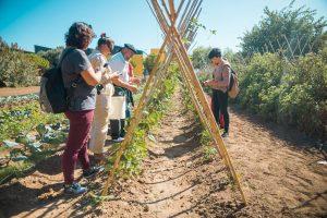 Jornada Inaugural del Pla de Dinamització i Governança Turística de la Mancomunitat del Carraixet a Alfara
